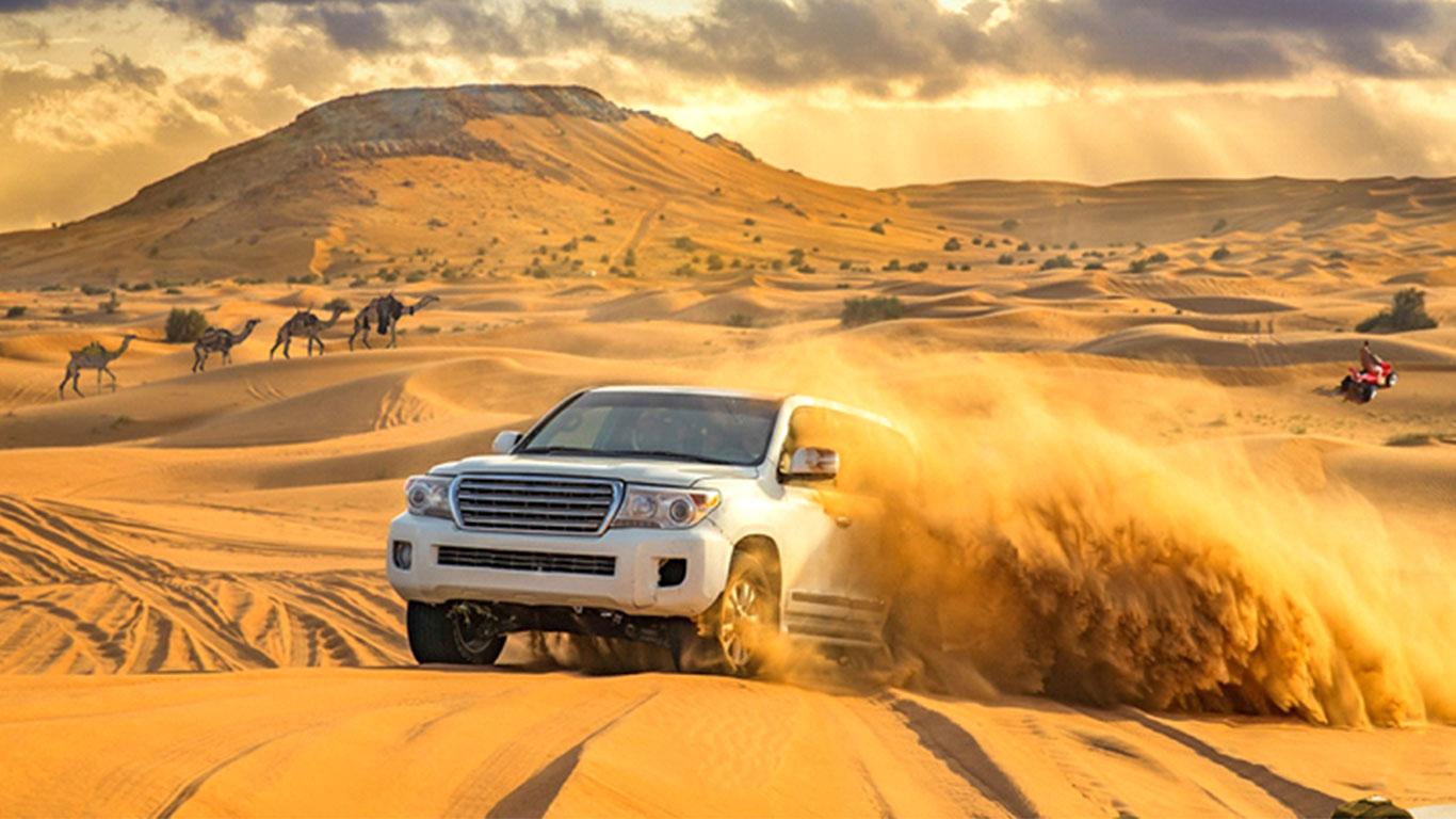 Desert Aafari UAE